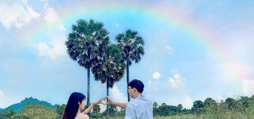 Thốt nốt trái tim - Tịnh Biên