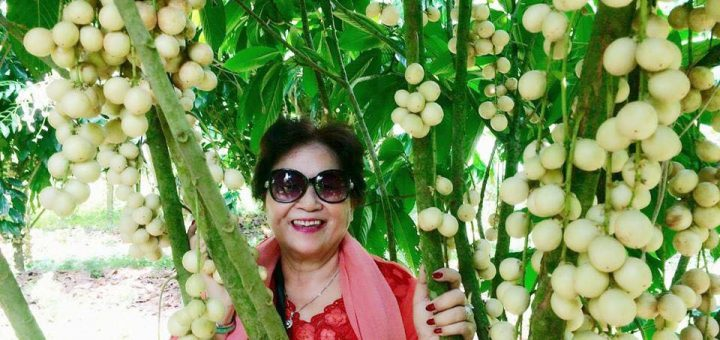 Vườn dâu Năm Cảnh - Mỹ Luông